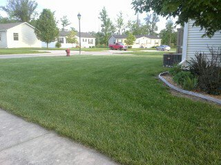 Front and Side Yard-Corner Lot